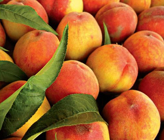 Melocotón de Cieza, the peaches of Cieza
