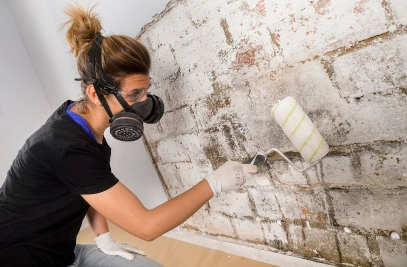 <span style='color:#780948'>ARCHIVED</span> - 28th September, free damp treatment and waterproofing workshops at Leroy Merlin stores in Murcia and Cartagena