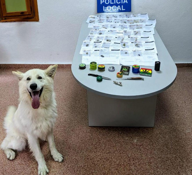 <span style='color:#780948'>ARCHIVED</span> - Eros the sniffer dog leads to 40 people facing drug-related charges in Cieza