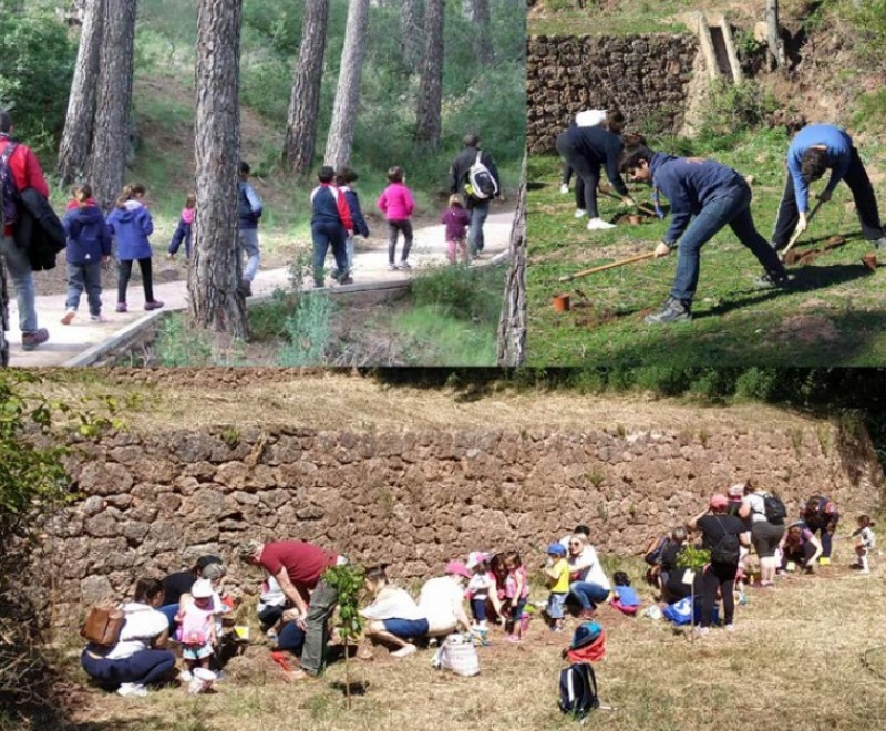 <span style='color:#780948'>ARCHIVED</span> - Sunday 22nd December Free family tree planting in the Sierra Espuña