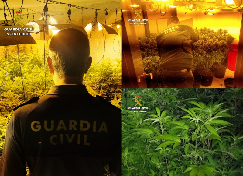 <span style='color:#780948'>ARCHIVED</span> - Four clandestine marijuana greenhouses discovered in Los Alcazares