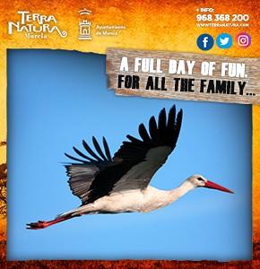 Terra Natura May A Full Day Of Fun 2020 Banner2
